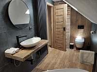 2.koupelna - chalupa k pronajmutí Frýdlant nad Ostravicí