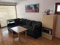 Apartmány Bečva Resort - apartmán ubytování Horní Bečva - 9