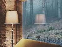 pohled z pohodlí gauče přímo do lesa - pronájem chaty Malenovice