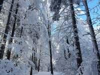 zima u nás - Malenovice