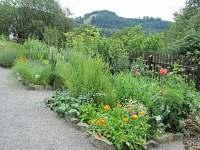 Bylinková zahrada - apartmán k pronájmu Bystřice nad Olší