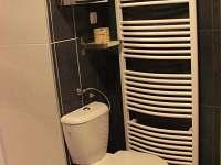 koupelna s WC - pronájem apartmánu Bystřice nad Olší