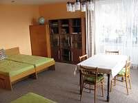 pokoj velký - pronájem apartmánu Bystřice nad Olší