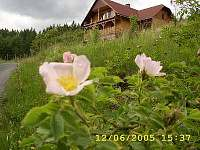 Rodinný dům na horách - okolí Solance pod Soláněm