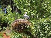 Zahrada chaty Beskiden - Valašská Bystřice
