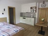 Dolní Bečva - apartmán k pronájmu - 8