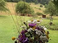 Květniy - chalupa k pronajmutí Bílá