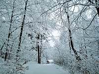 Lednová zima i na peci je znát. - Bystřice nad Olší