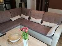 Obývací pokoj spojený s kuchyňí - chalupa k pronájmu Trojanovice