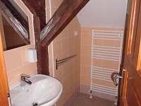 Hukvaldy - Rychaltice - apartmán k pronájmu - 16