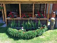 venkovní terasa- posezení - rekreační dům k pronájmu Bystřička