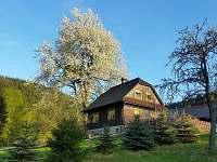 ubytování Velké Karlovice Chalupa k pronajmutí