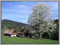 Chalupa k pronajmutí - dovolená Vsetínsko rekreace Velké Karlovice