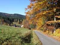 Příjezdová cesta - podzim
