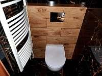 WC v pokoji č. 1 - rekreační dům k pronájmu Tichá na Moravě