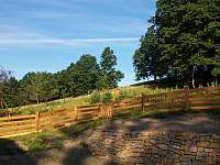 Výhled před chalupou - pronájem Tichá na Moravě