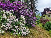 zahrada - pronájem chalupy Bystřička