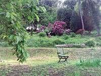 Zahrada - chalupa k pronájmu Bystřička