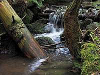 prales Razula