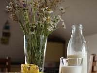 mléko - Kunčice pod Ondřejníkem