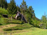 chata v přírodě u lesa a vody