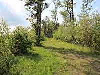 Horská chata Plenisko - chata - 34 Nýdek