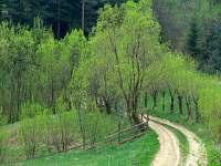 Beskydy - nekonečné procházky cestou - necestou, nejlepší relax pro oči