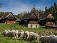 Tip -  Valašské muzeum v přírodě - dědina, Rožnov pod Radhoštěm