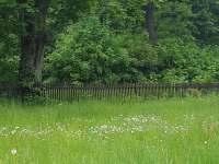 pozemek - chalupa k pronájmu Čeladná