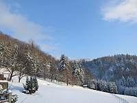 Blízký les - Bystřice