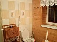 wc v koupelně, podkroví, jaro 2020 - chalupa ubytování Ostravice