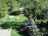 zahrada z okna