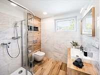 Malý apartmán- koupelna se sprchovým koutem - chalupa k pronájmu Bukovec