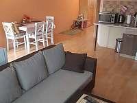 Apartmán k pronajmutí - apartmán ubytování Vidče - 9