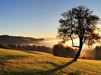 Oblast je zvláště vhodná pro vycházky do okolí, houbaření a cykloturistiku