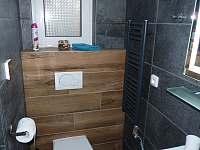 koupelna + wc - Ostravice