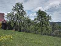 Valašská Senice - chalupa k pronájmu - 21