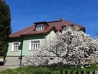 villa s magnolií