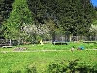 Chata Bacov - chata ubytování Prostřední Bečva - 5