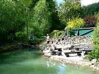 Vlastní rybník je součástí zahrady, povolenka zdarma - pronájem apartmánu Halenkov