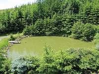 Rekreační dům s bazénem - rekreační dům k pronájmu - 3 Liptál