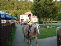 možnost vyjížďky na koních - chalupa k pronajmutí Rajnochovice
