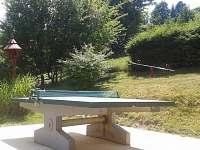 venkovní stolní tenis - Rajnochovice