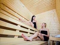 Wellness (vířivá vana a finská sauna) - chalupa k pronájmu Dolní Lomná