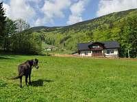 Apartmán na horách - dovolená Přehrada Šance rekreace Pstruží - Opálená