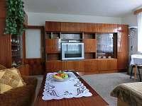 Bystřice pod Hostýnem - apartmán k pronájmu - 10