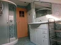Apartmany s bazénem - apartmán k pronájmu - 15 Bystřice pod Hostýnem