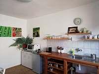horní apartmán-kuchyň - Halenkov