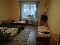 Penzion PALMA - ubytování Frýdlant nad Ostravicí - 9