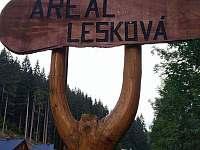 Chata v Areálu Lesková - pronájem chaty - 18 Velké Karlovice